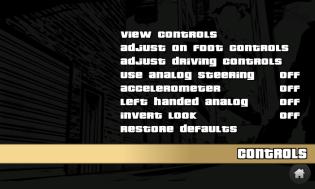 07_Options_Controls