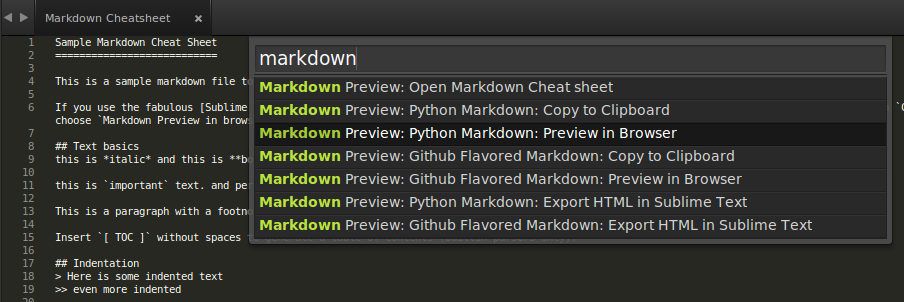 MarkdownPreview Options