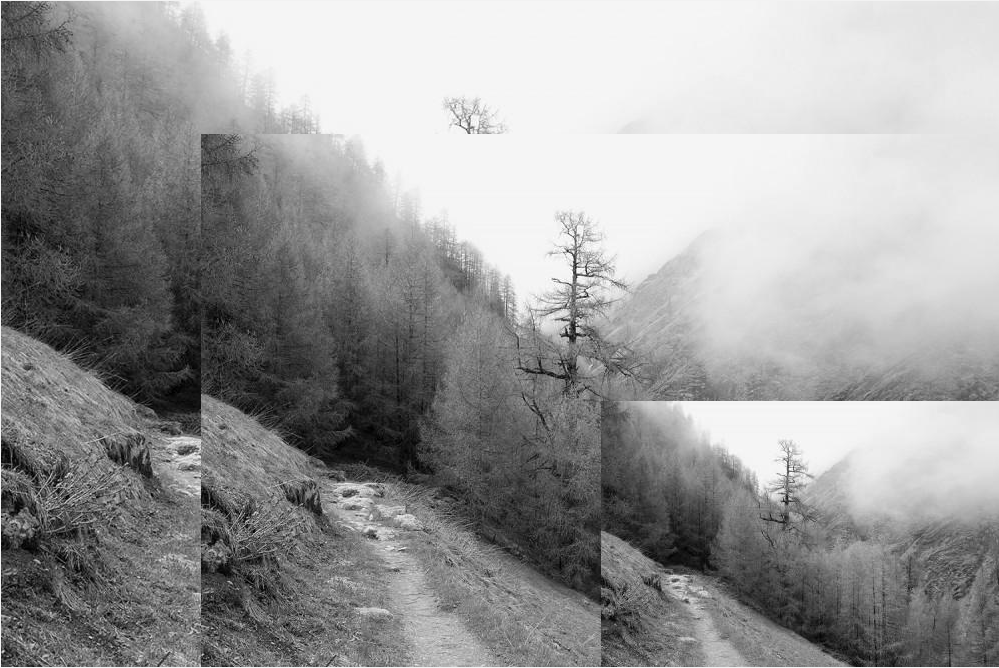 Image Effects Generator Black and White