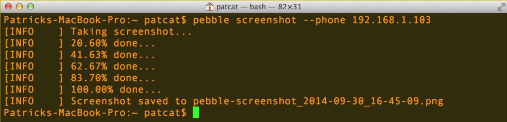 Running the screenshot command<