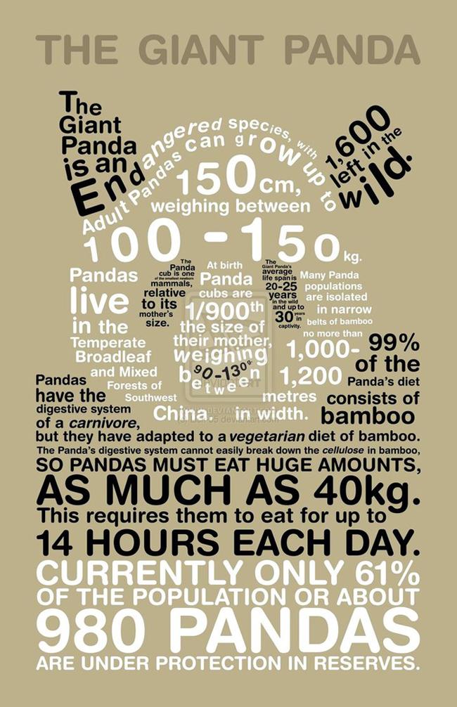Giant Panda Infographic