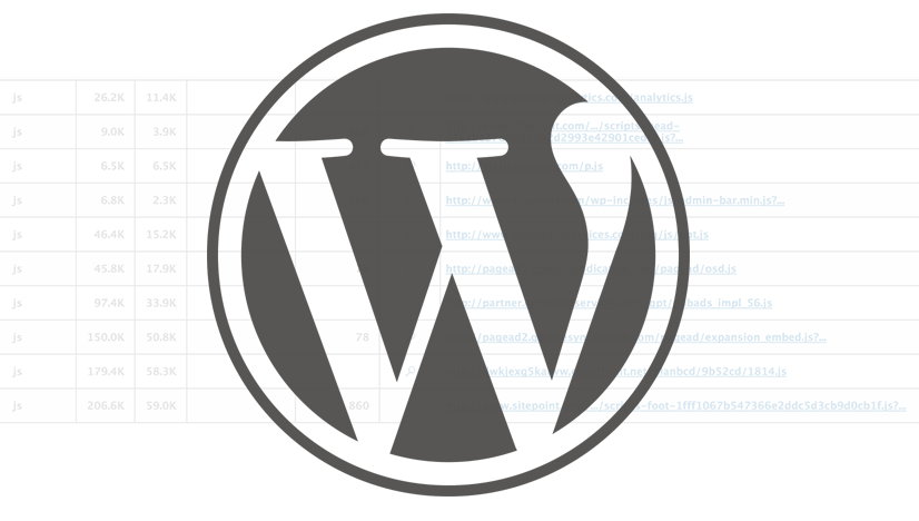 WordPress Asset Handling