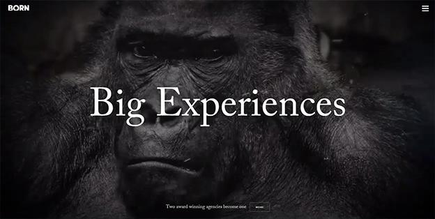 Big Experiences