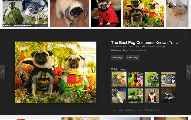 Google Images search example