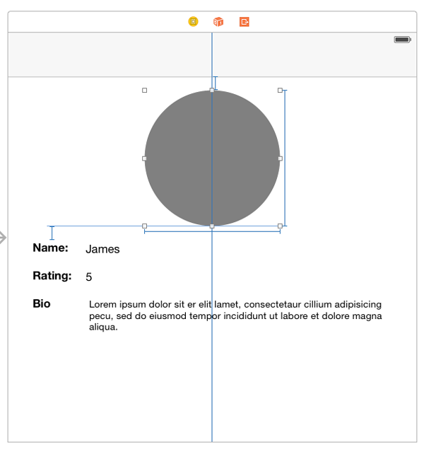 Grey circle in image
