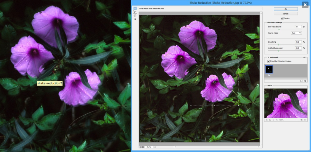 Photoshop Shake Reduction