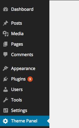 Theme Settings API
