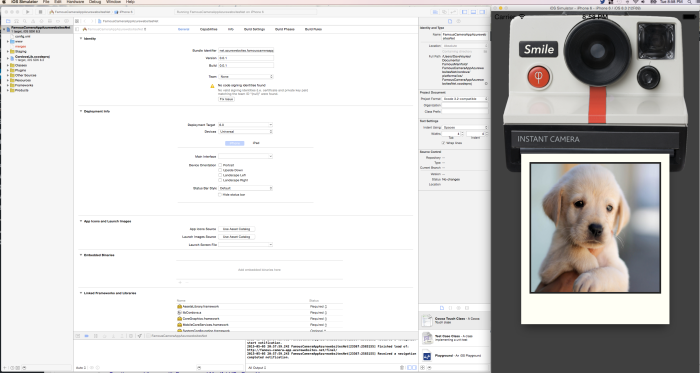 App Running Inside Cordova on iOS