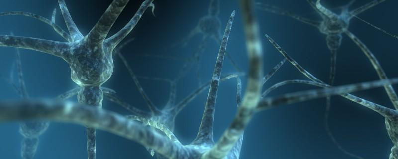 Scott Ingram—Dual Neuron (CC BY-NC 2.0)