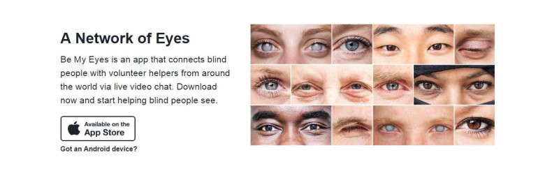 Website detail: A network of eyes