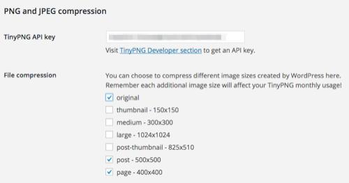 TinyPNG WordPress Plugin Configuration