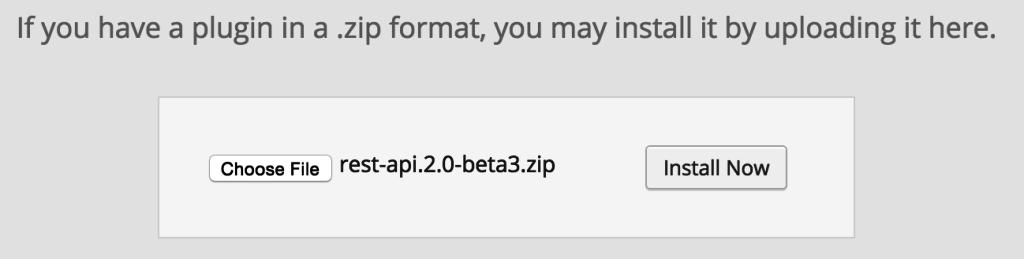 WP API WordPress Plugin Upload and Install
