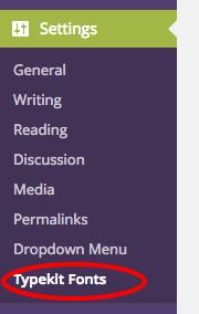Type Kit Plugin Embed Settings