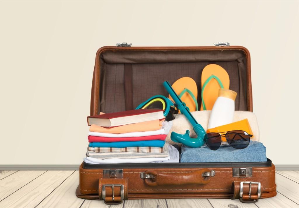 Traveler's suitcase
