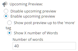 post preview admin enabled x words