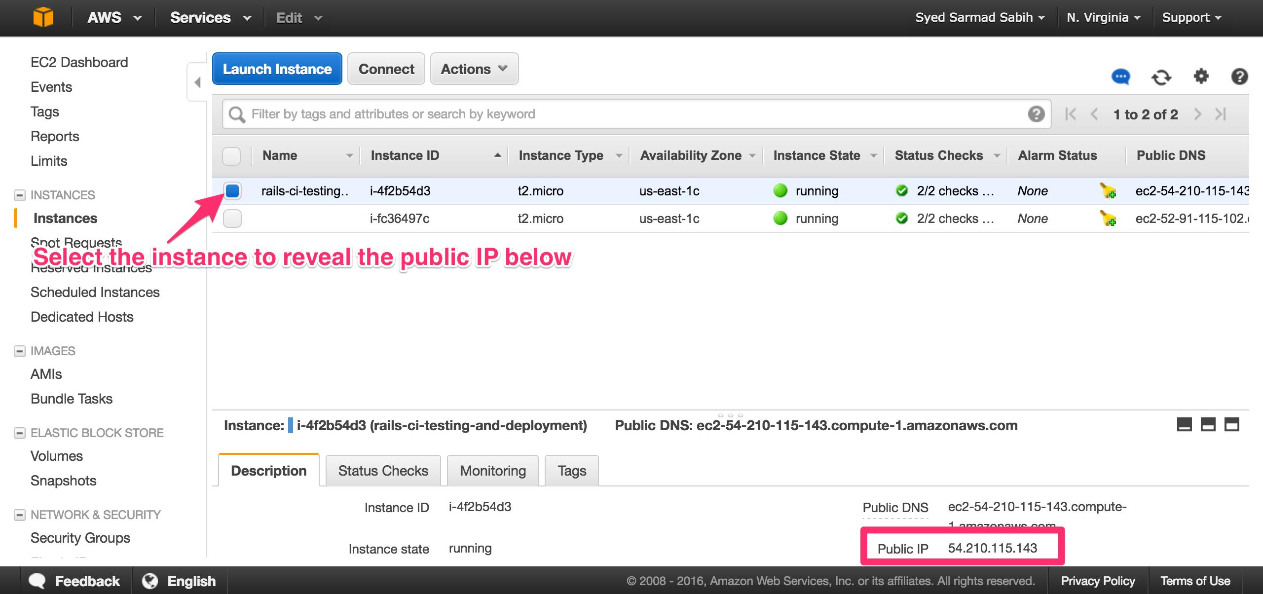 aws-ec2-instances-public-ip