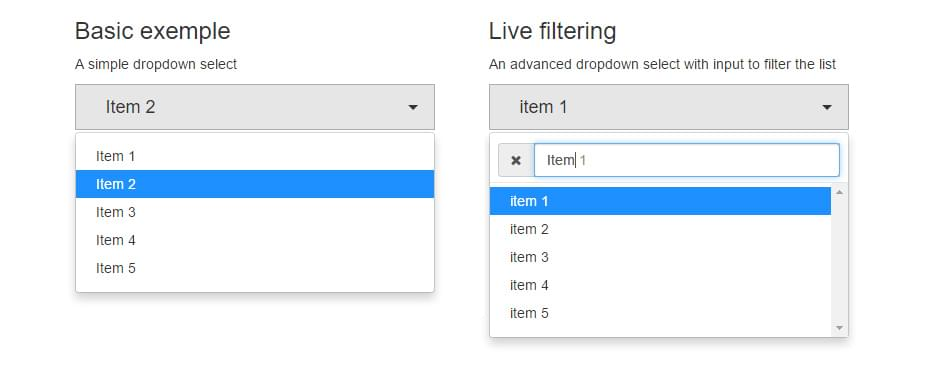 screenshot of dropdown boxes styled with the plugin