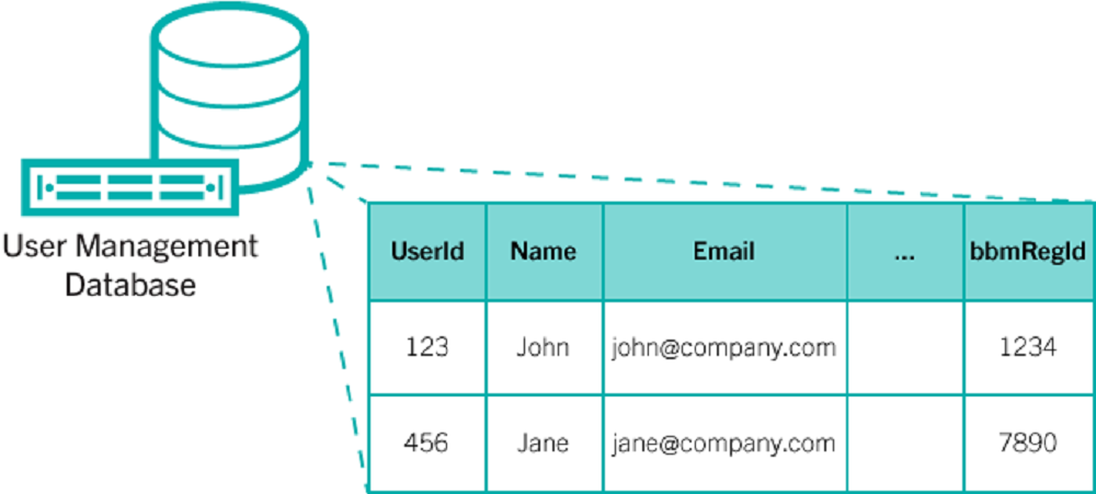BBM User database