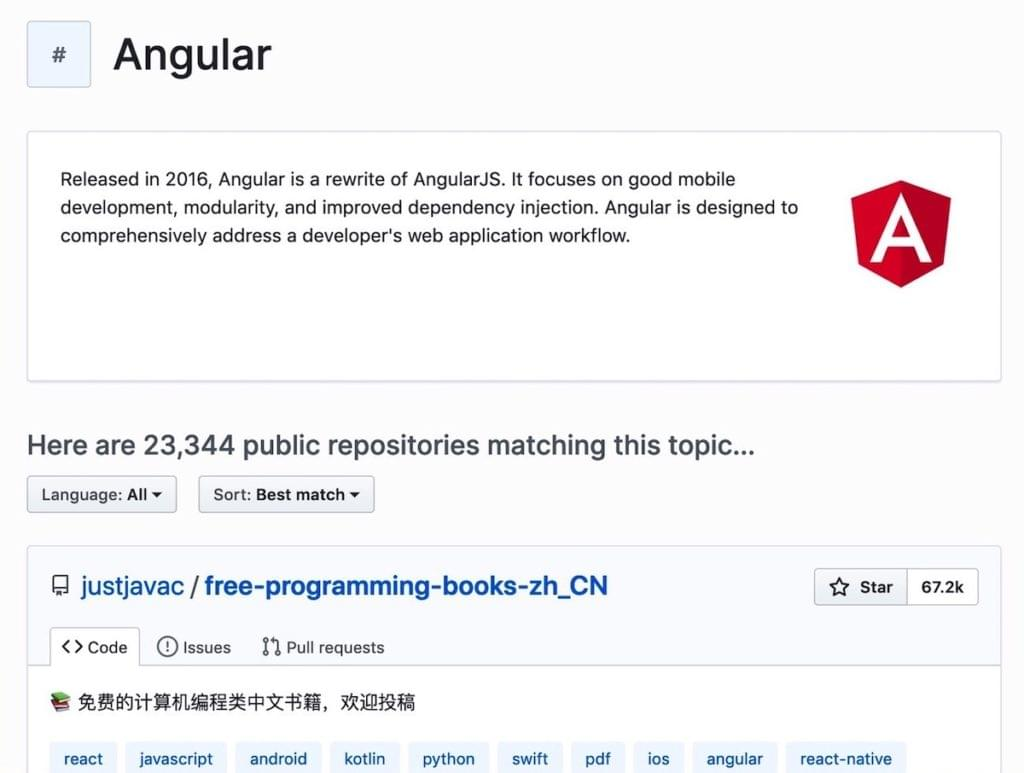 Angular - Career Transition Into Web Development