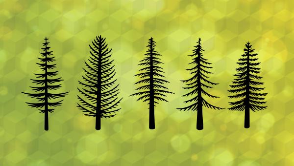 Meet Redwood, a Full-stack, Serverless Jamstack Framework