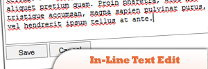 In-Line-Text-Edit.jpg