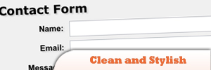 Clean-and-Stylish-CSS3-Form.jpg