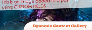Dynamic-Content-Gallery1.jpg