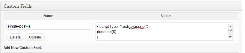 wordpress-putting-code-in-custom-field