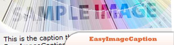 EasyImageCaption.jpg