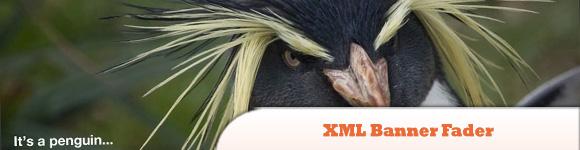 XML Banner Fader