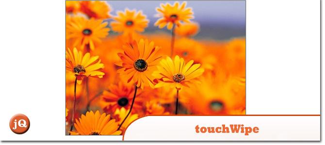 touchWipe.jpg