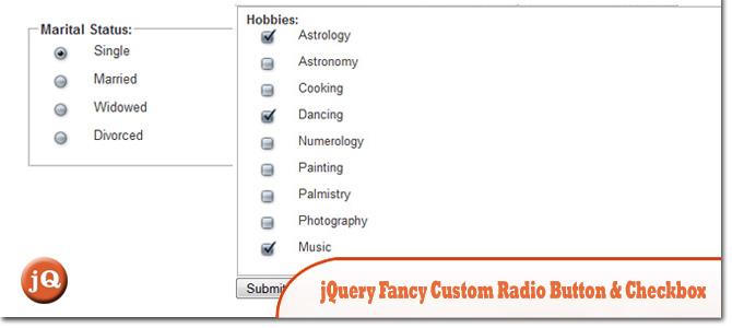 jQuery-Fancy-Custom-Radio-Button-Checkbox.jpg