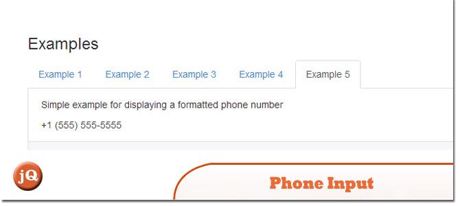 Phone-Input.jpg