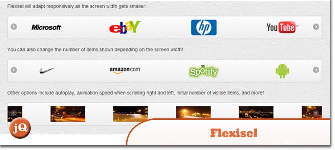 Flexisel.jpg