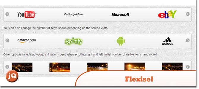 Flexisel1.jpg